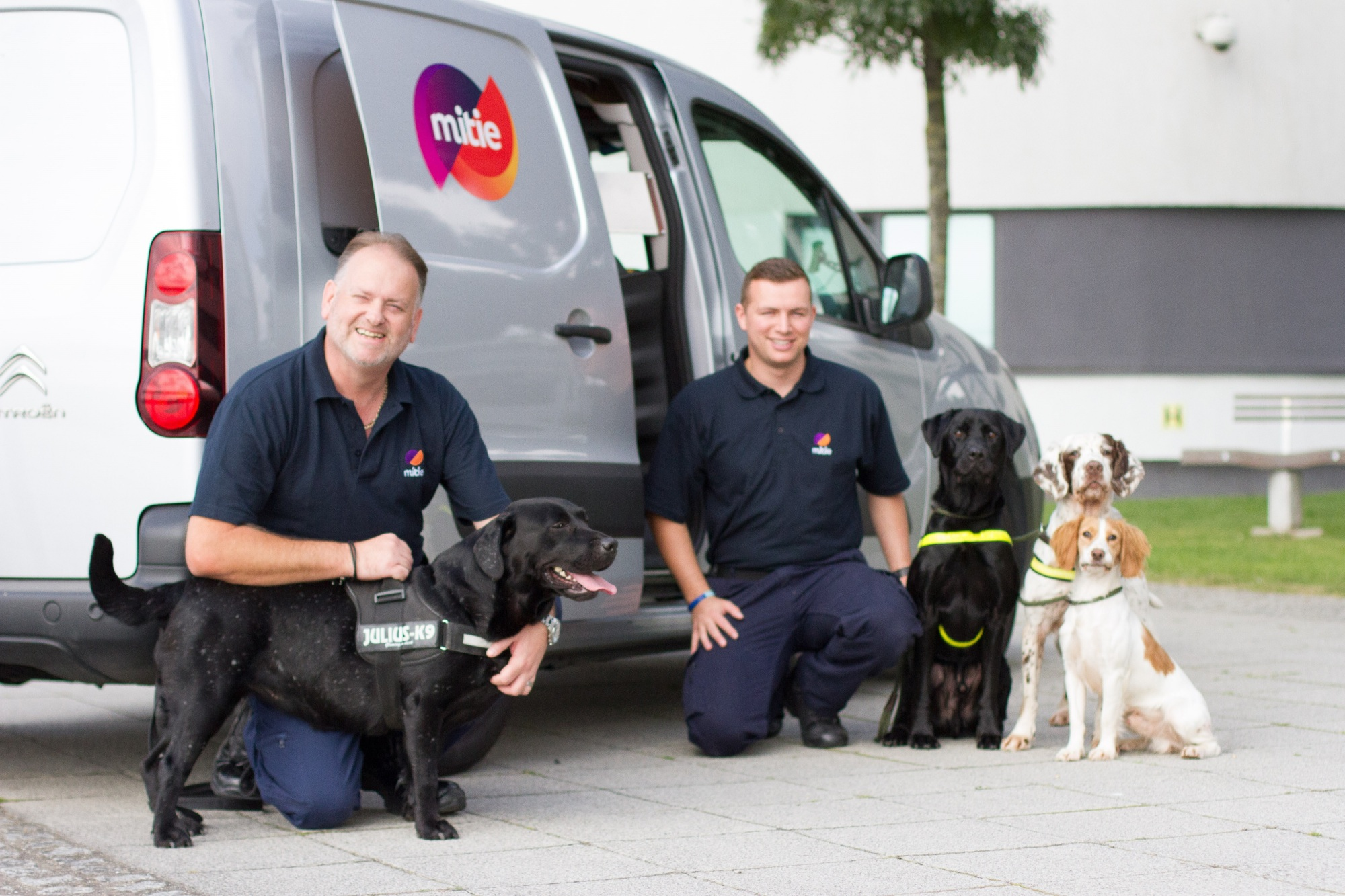 Mitie Sniffer Dogs