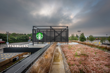The new, green Starbucks store is located at Willow Tree Lane